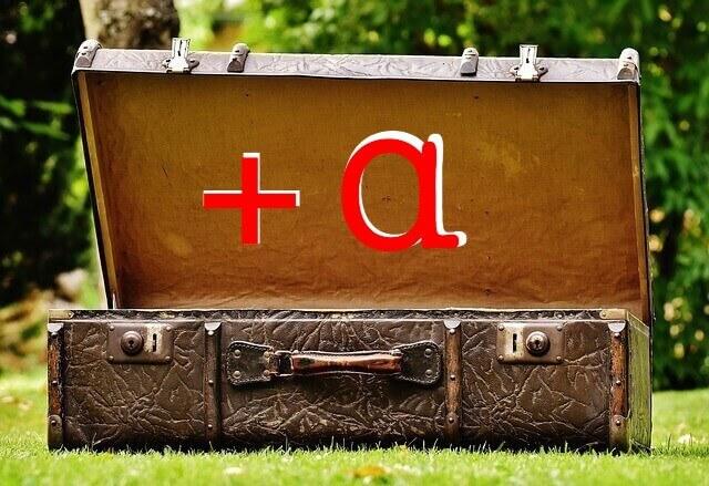 Luggage a