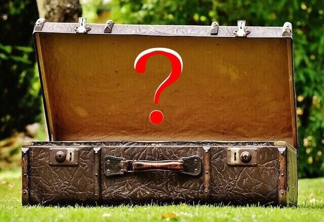 Luggage q